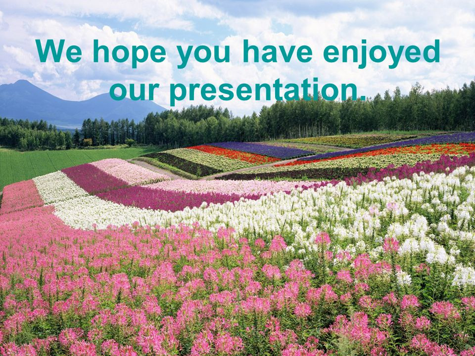 We hope you have enjoyed our presentation.