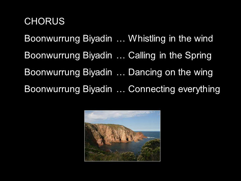 CHORUS Boonwurrung Biyadin … Whistling in the wind Boonwurrung Biyadin … Calling in the Spring Boonwurrung Biyadin … Dancing on the wing Boonwurrung Biyadin … Connecting everything