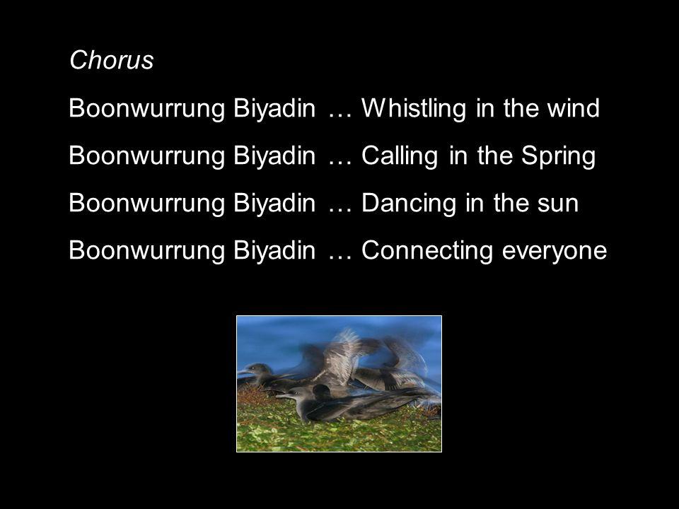 Chorus Boonwurrung Biyadin … Whistling in the wind Boonwurrung Biyadin … Calling in the Spring Boonwurrung Biyadin … Dancing in the sun Boonwurrung Biyadin … Connecting everyone