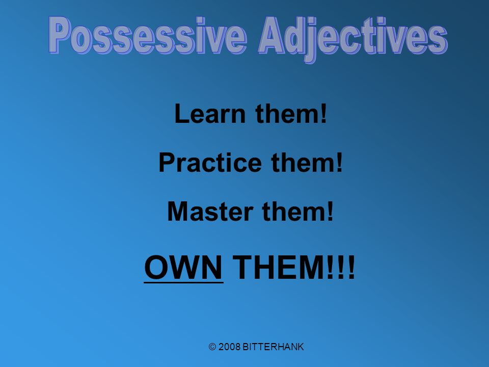 © 2008 BITTERHANK Learn them! Practice them! Master them! OWN THEM!!!