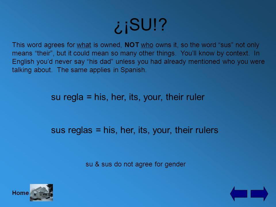 ¿¡SU!. This one little word causes so much confusion for Spanish students.