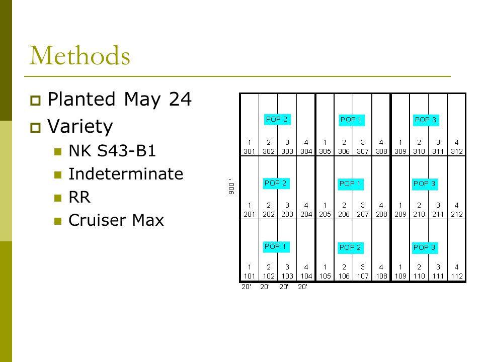 Methods  Planted May 24  Variety NK S43-B1 Indeterminate RR Cruiser Max