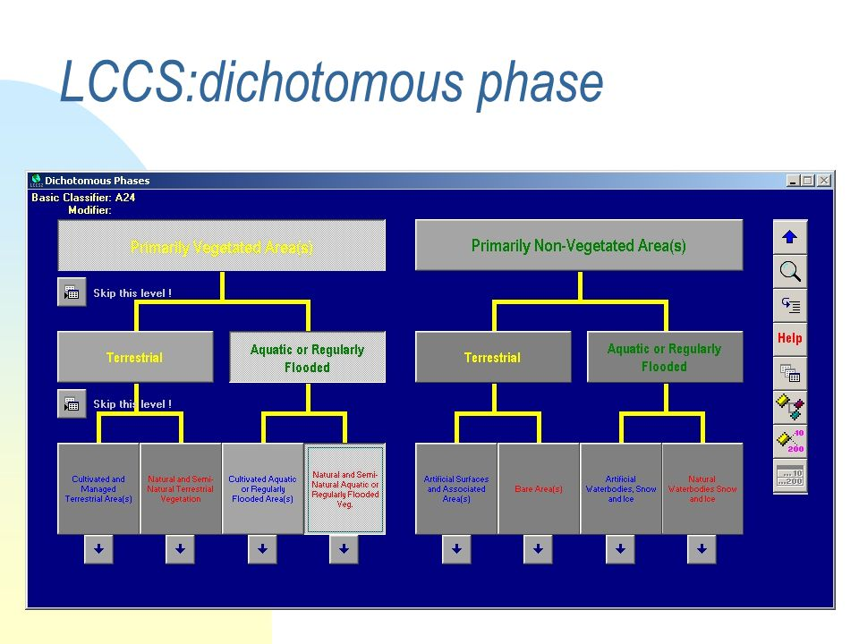 CCA principles Core of CCA: independent of other classifications (e.g.