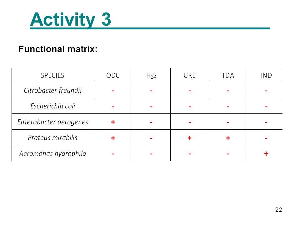 22 Activity 3 Functional matrix: