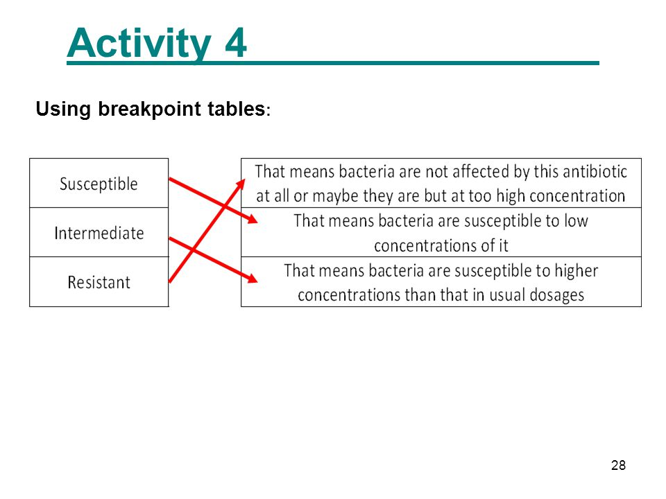 28 Activity 4 Using breakpoint tables :