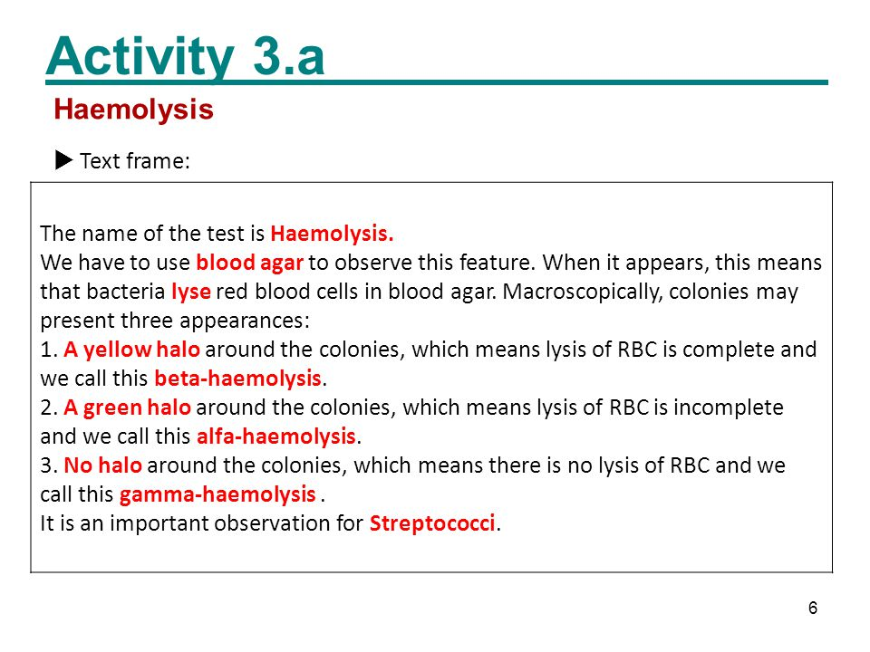 6 Activity 3.a  Text frame: The name of the test is Haemolysis.
