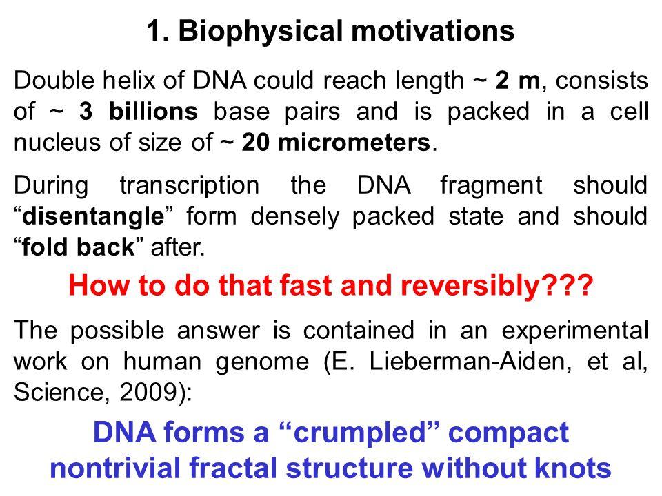 Elongation of a single random walk in hyperbolic geometry Radial distribution function is Random walks in Lobachevsky plane