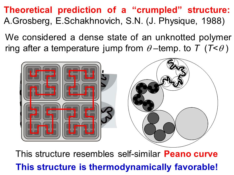In a compact state two scenarios of a microstructure formation could be realized.