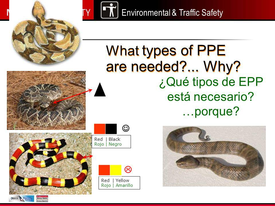 Environmental & Traffic Safety