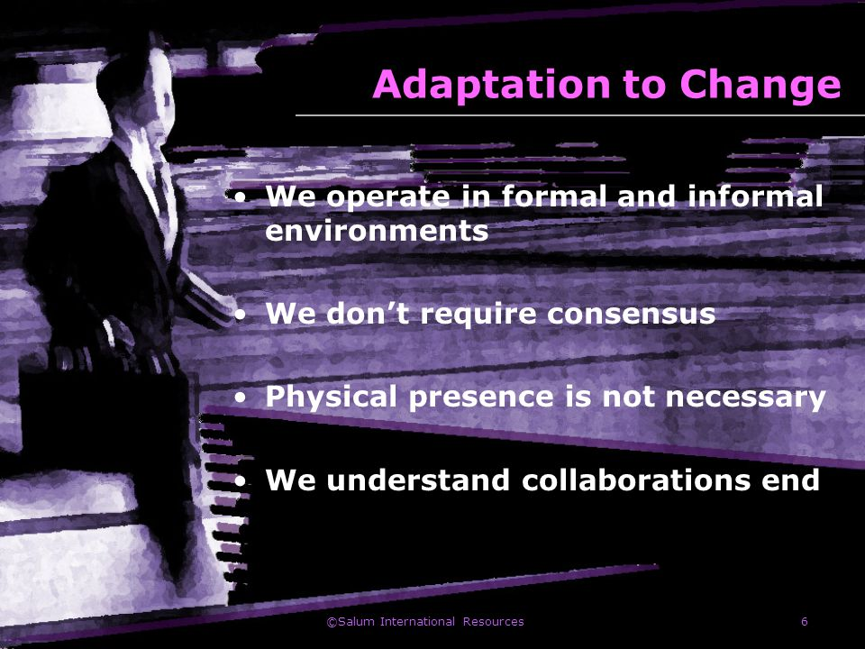 ©Salum International Resources6 Adaptation to Change We operate in formal and informal environments We don't require consensus Physical presence is no