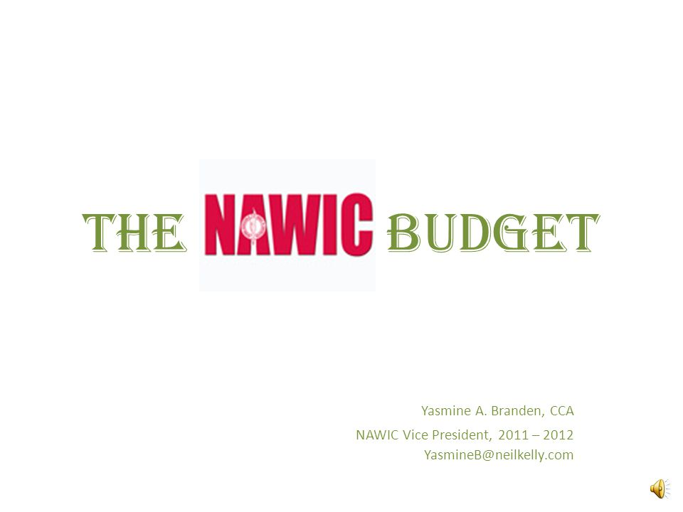 What Now.Director will briefly review your NAWIC budget Brief Q&A More Qs.