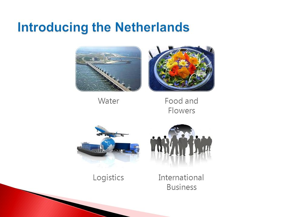  Export PL-NL: machines and electronic devices (30%), ships and yachts, metal and mineral products, chemical products, food and drinks, animals and animal products, and others  Export NL-PL: machines and electronic devices (24%), chemical products, ships and yachts, plastic products, plant products, metal products, food and drinks, animals and animal products  Netherlands in 2013 was 9th trade partner of Poland (6th in EU)  Poland in 2013 was 12th trade partner of the Netherlands.