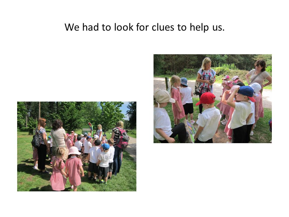 We had to look for clues to help us.