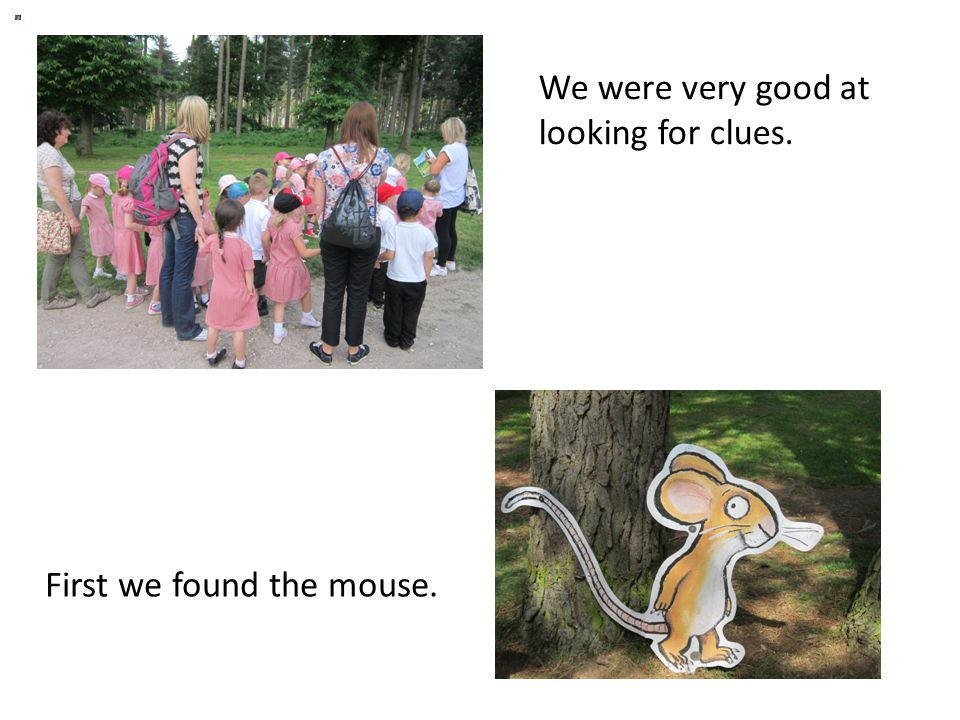 We were very good at looking for clues. First we found the mouse.