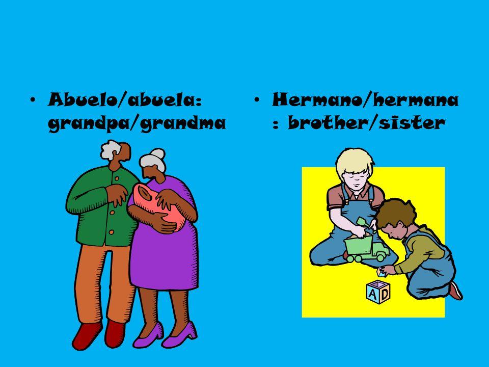 Abuelo/abuela: grandpa/grandma Hermano/hermana : brother/sister