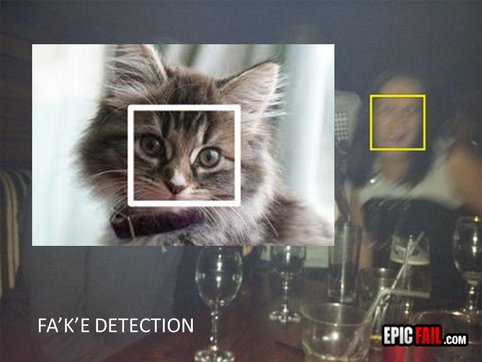 FA'K'E DETECTION