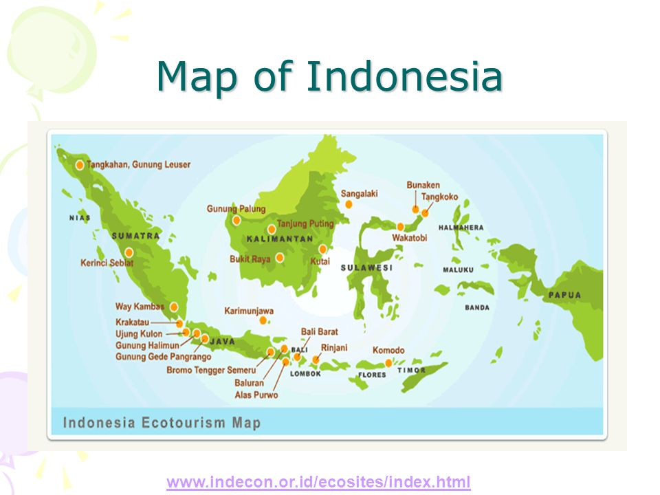 Map of Indonesia www.indecon.or.id/ecosites/index.html