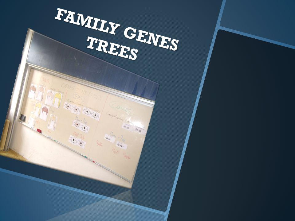 FAMILY GENES TREES