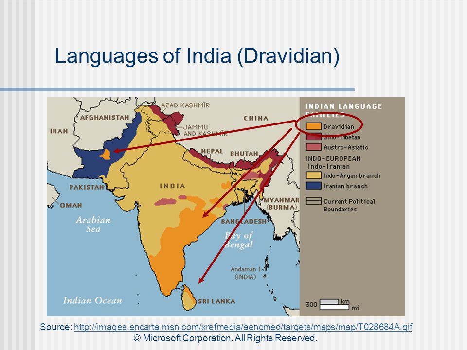 Languages of India (Dravidian) Source: http://images.encarta.msn.com/xrefmedia/aencmed/targets/maps/map/T028684A.gifhttp://images.encarta.msn.com/xrefmedia/aencmed/targets/maps/map/T028684A.gif © Microsoft Corporation.