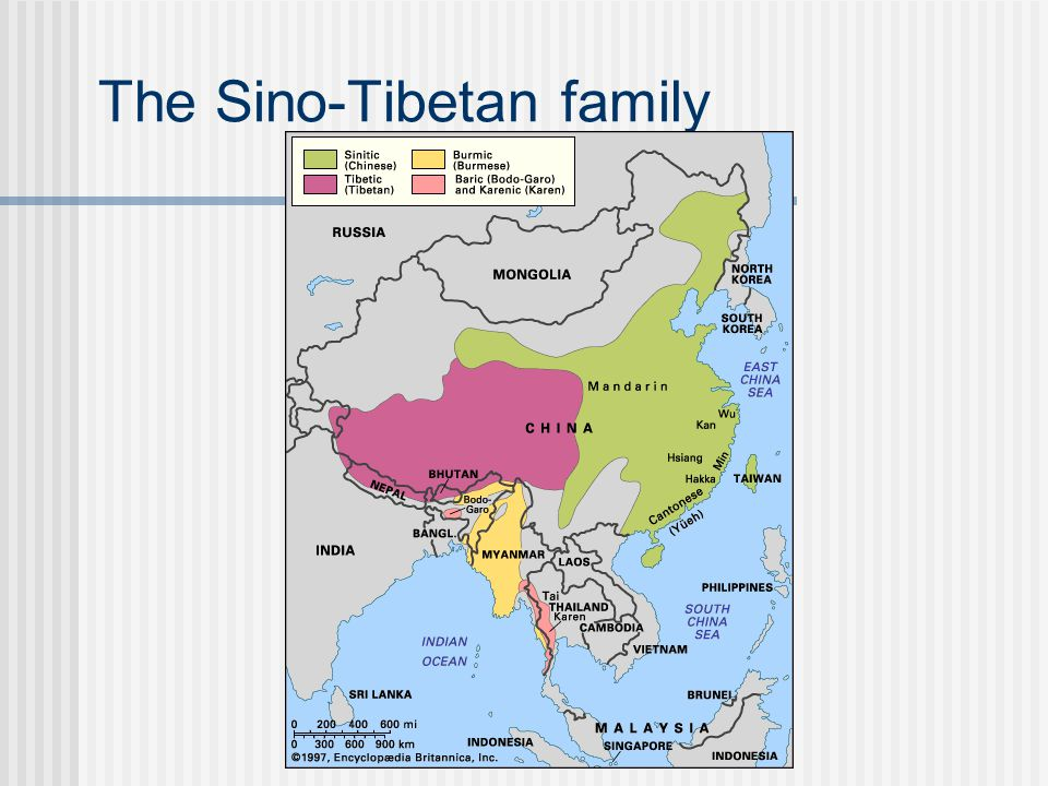 The Sino-Tibetan family