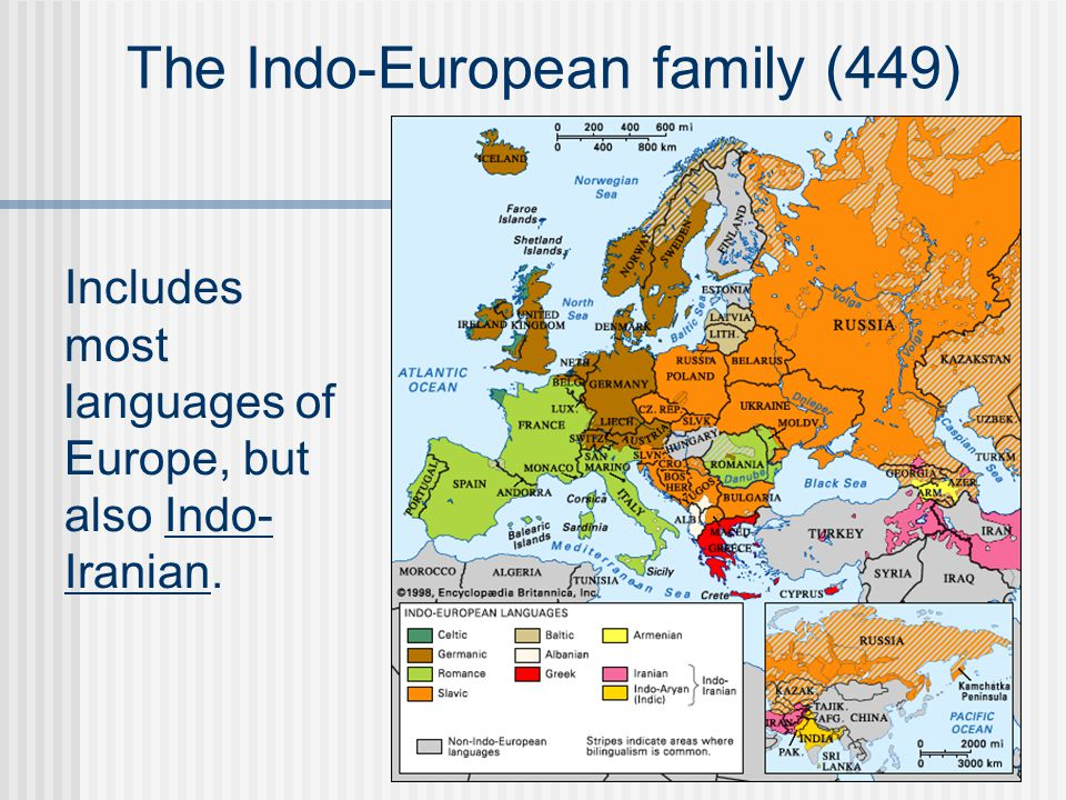 The Indo-European family (449) Includes most languages of Europe, but also Indo- Iranian.