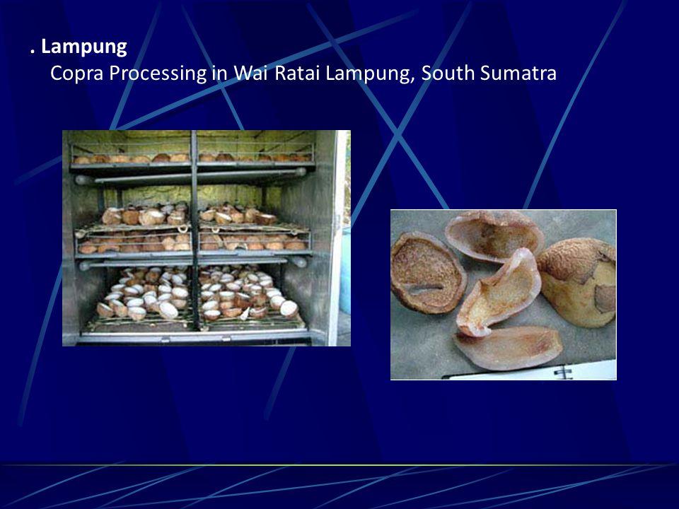 . Lampung Copra Processing in Wai Ratai Lampung, South Sumatra