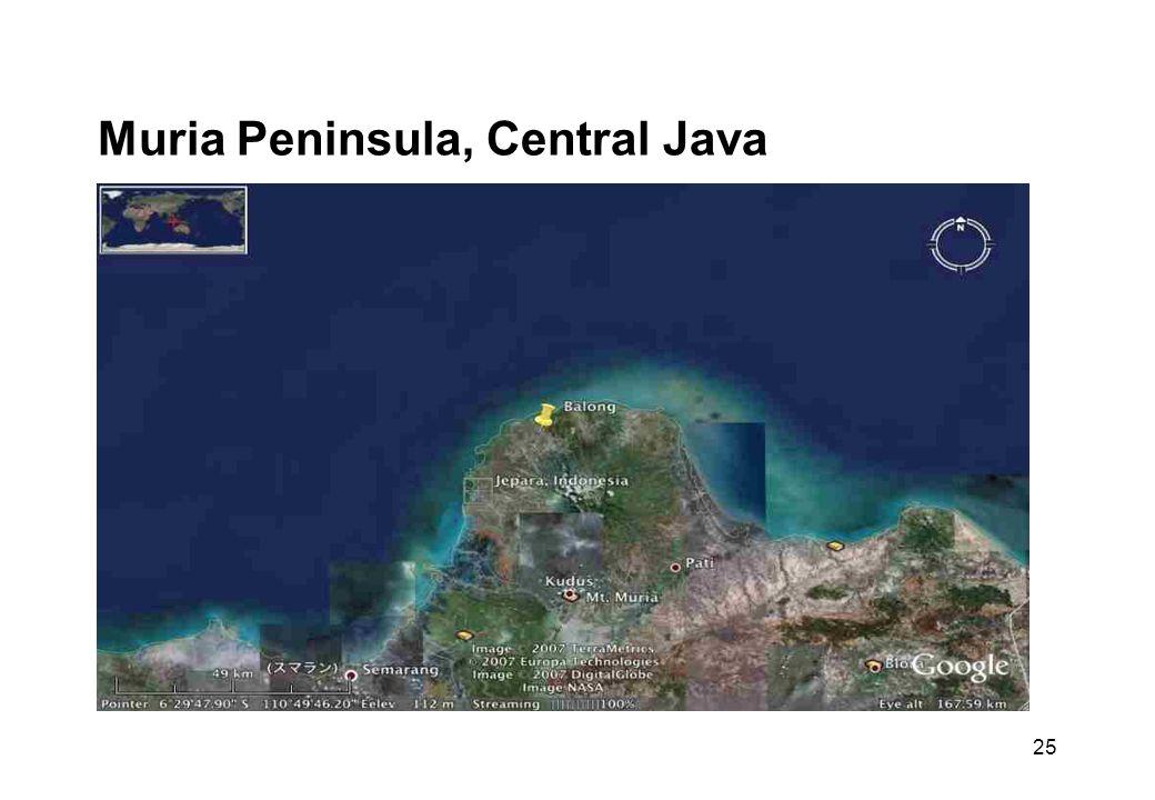 25 Muria Peninsula, Central Java