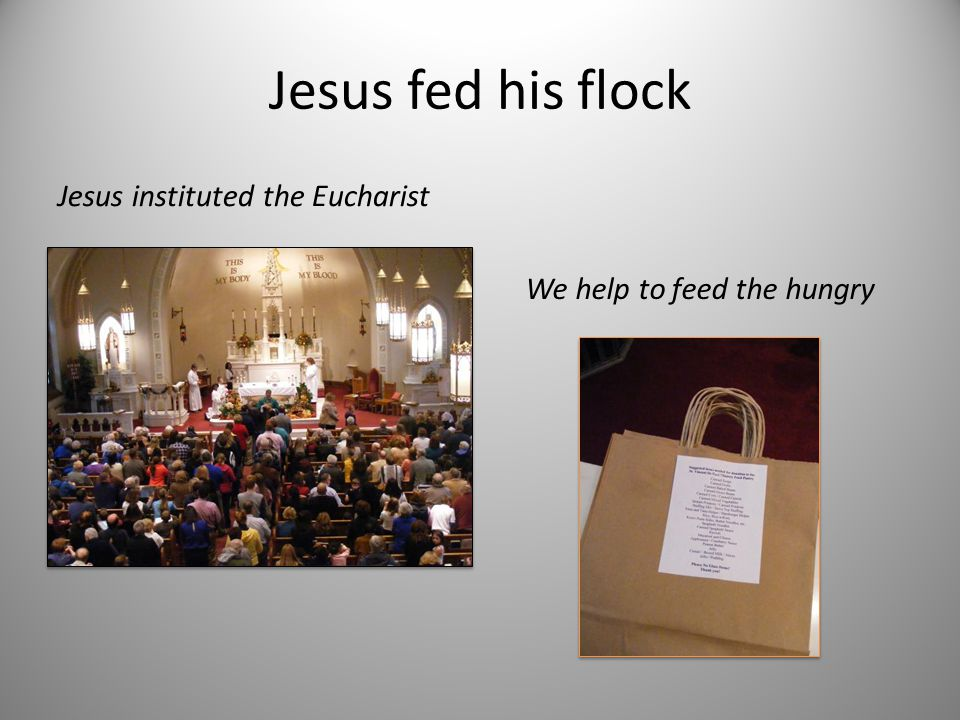 Jesus fed his flock Jesus instituted the Eucharist We help to feed the hungry