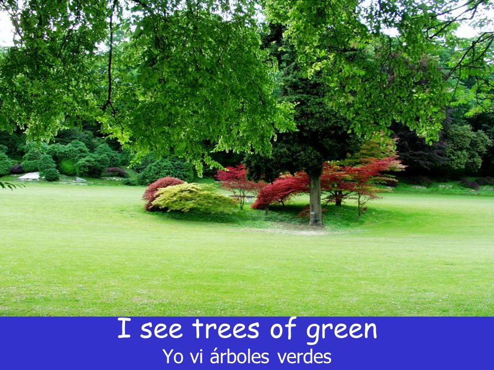 I see trees of green Yo vi árboles verdes