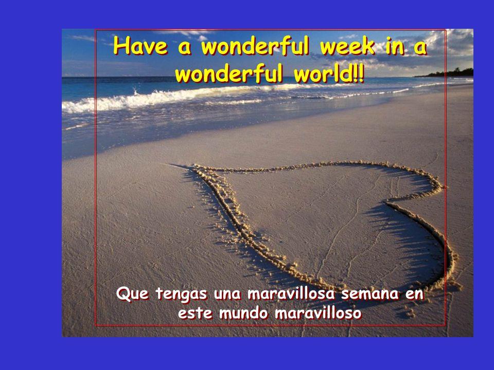 what a wonderful world. qué mundo maravilloso.