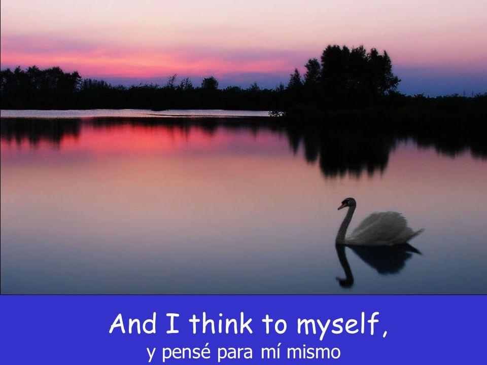And I think to myself, y pensé para mí mismo