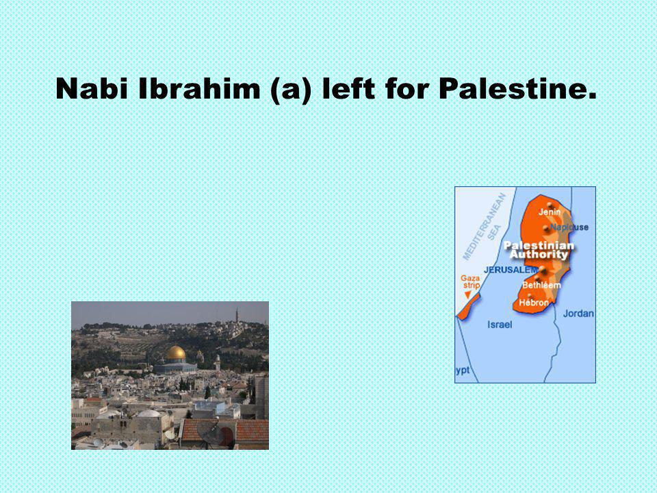 Nabi Ibrahim (a) left for Palestine.