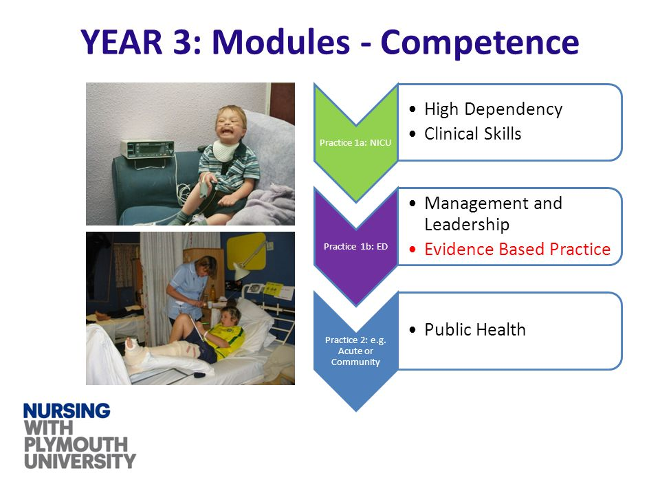 Practice 1a: NICU High Dependency Clinical Skills Practice 1b: ED Management and Leadership Evidence Based Practice Practice 2: e.g. Acute or Communit