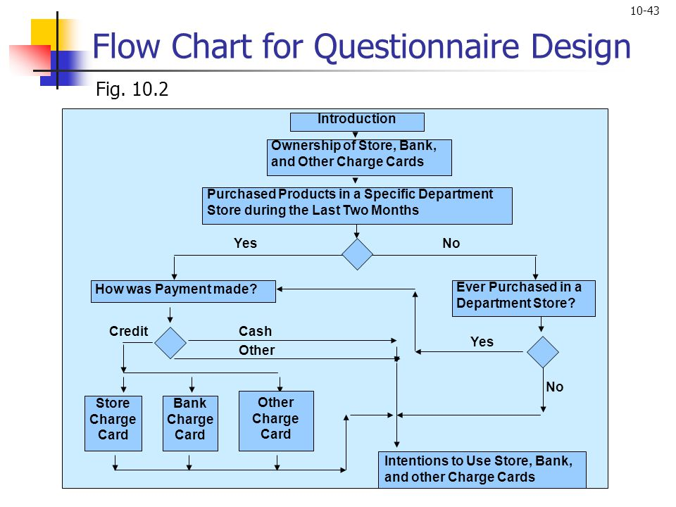 10-43 Ownership of Store, Bank, and Other Charge Cards Introduction Store Charge Card Purchased Products in a Specific Department Store during the Las