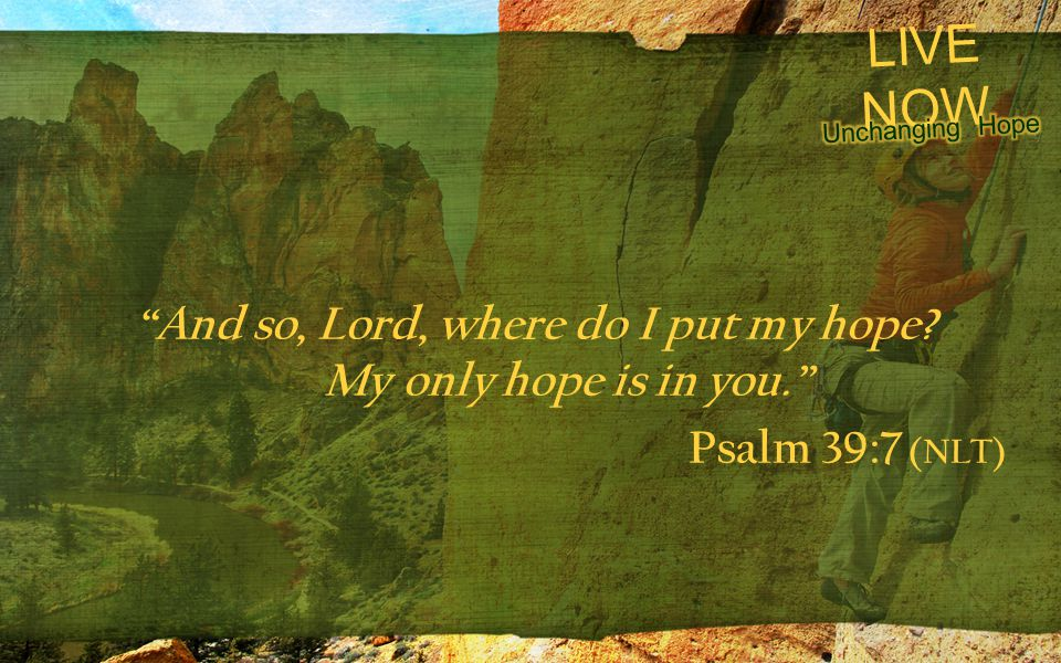 "LIVE NOW ""And so, Lord, where do I put my hope? My only hope is in you."" Psalm 39:7 (NLT)"