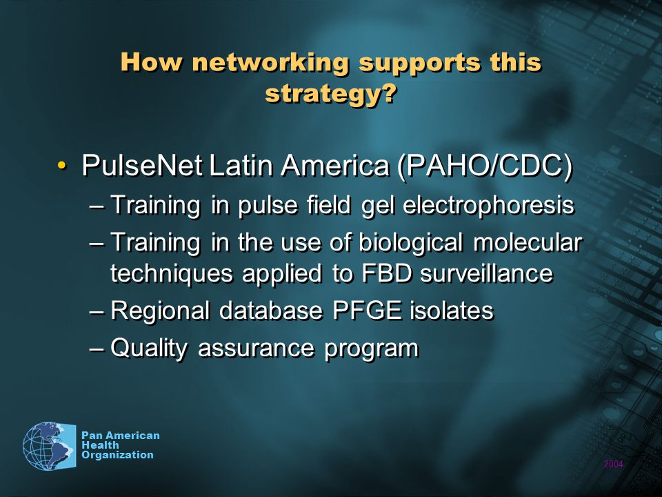 2004 Pan American Health Organization How networking supports this strategy.