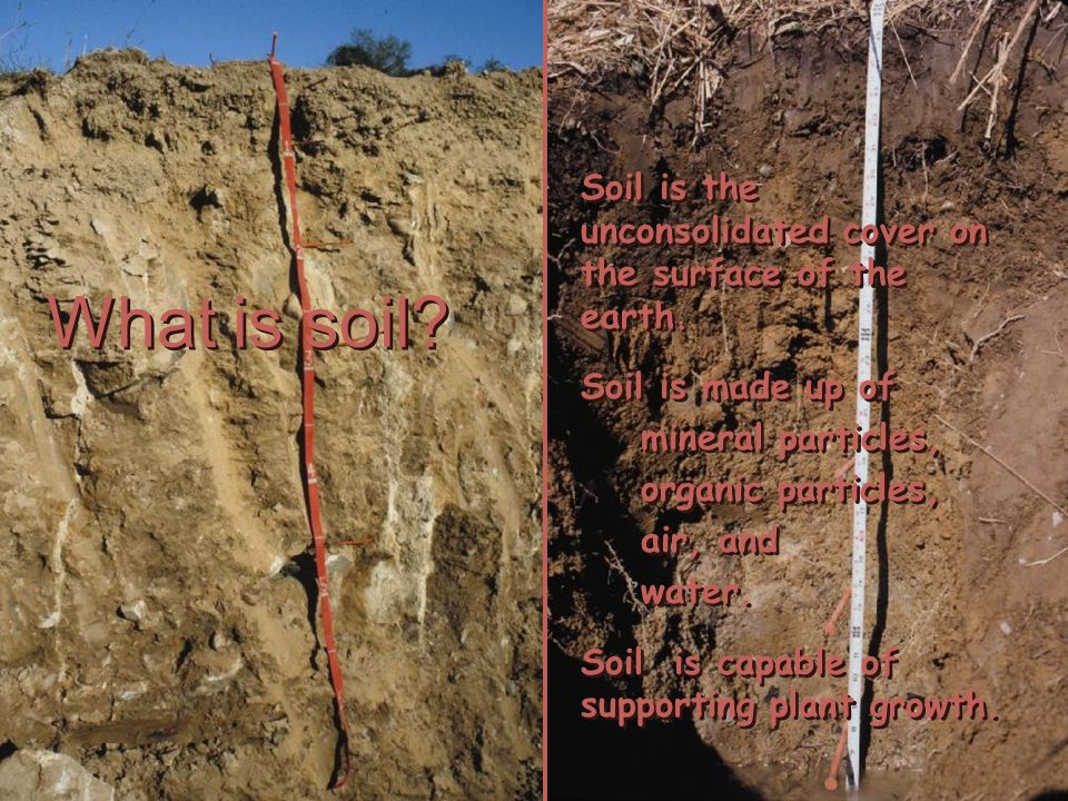 Soil Components The 4 parts of soil About ½ of the soil volume is solid particles About ½ of the soil volume is pore space