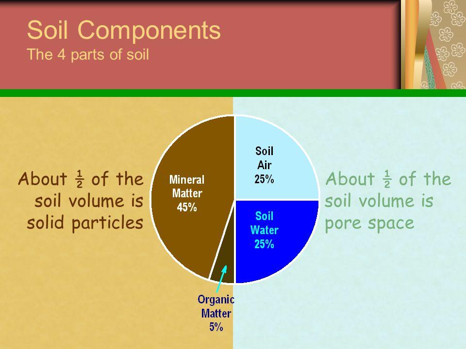 Chemical bonding pH Nutrient Availability Cation Exchange Capacity (CEC) Soil Chemistry