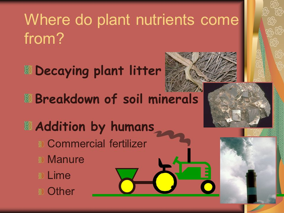 Where do plant nutrients come from.