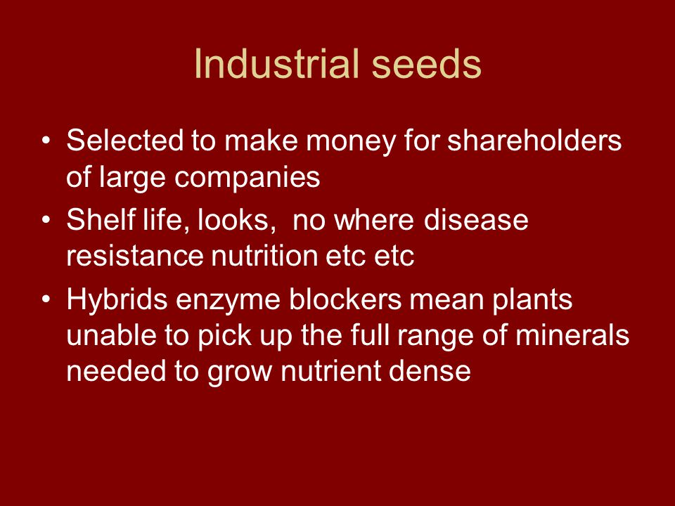 Industrial seeds Selected to make money for shareholders of large companies Shelf life, looks, no where disease resistance nutrition etc etc Hybrids enzyme blockers mean plants unable to pick up the full range of minerals needed to grow nutrient dense