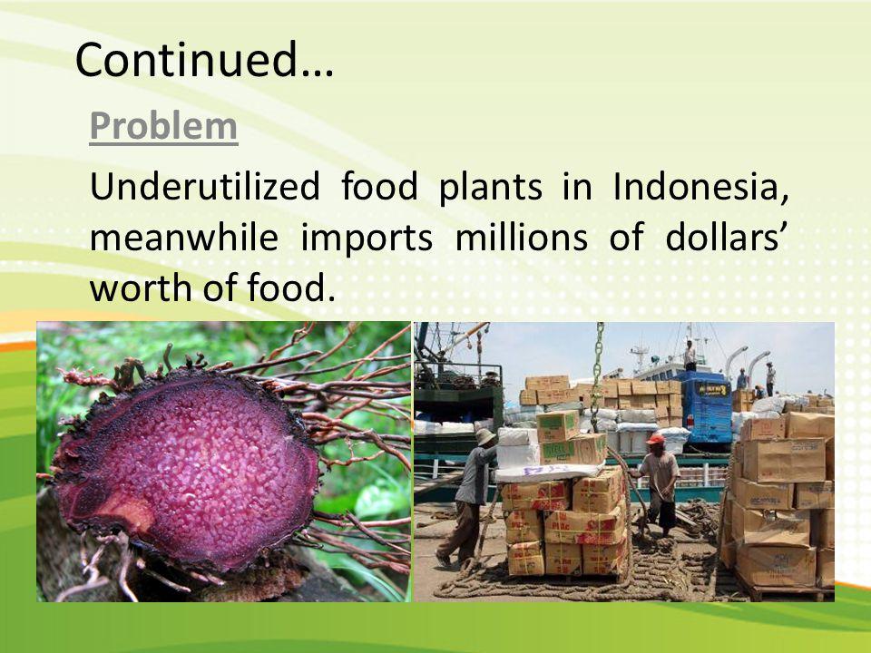 Continued… Solution Tampilkan pasar traditional di bali yang menjual jajanan pasar Strategy Research on underutilized local food plants.