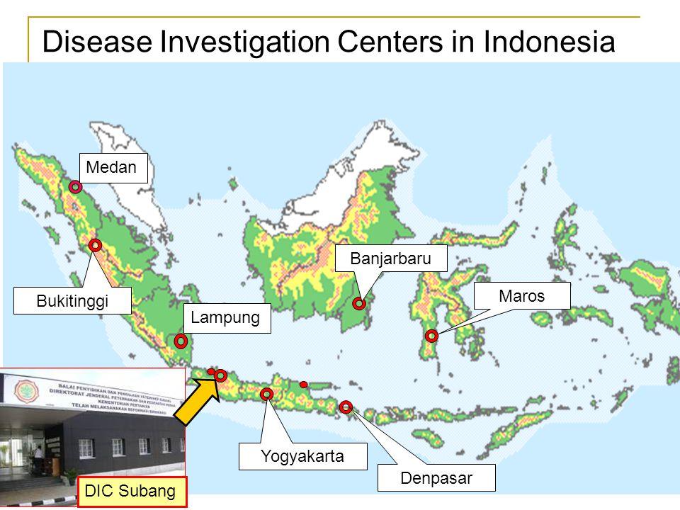 Denpasar Bukitinggi Yogyakarta Banjarbaru Maros Disease Investigation Centers in Indonesia DIC Subang Medan Lampung