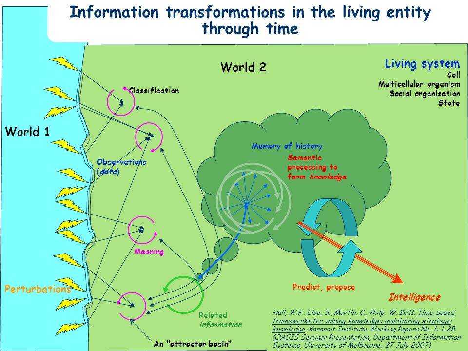 Slide 42 Information transformations in the living entity through time World 1 Living system Cell Multicellular organism Social organisation State Perturbations Observations (data) Classification Meaning An attractor basin Related information Memory of history Semantic processing to form knowledge Predict, propose Intelligence World 2 Hall, W.P., Else, S., Martin, C., Philp, W.