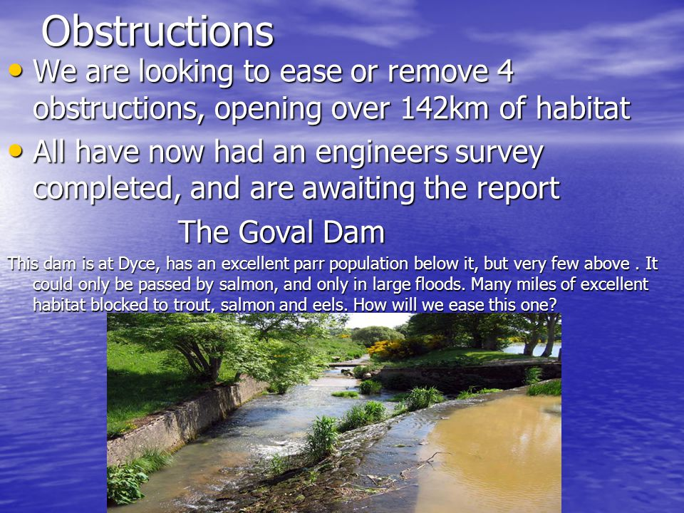 Obstructions We are looking to ease or remove 4 obstructions, opening over 142km of habitat We are looking to ease or remove 4 obstructions, opening over 142km of habitat All have now had an engineers survey completed, and are awaiting the report All have now had an engineers survey completed, and are awaiting the report The Goval Dam The Goval Dam This dam is at Dyce, has an excellent parr population below it, but very few above.