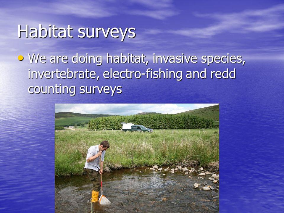 Habitat surveys We are doing habitat, invasive species, invertebrate, electro-fishing and redd counting surveys We are doing habitat, invasive species, invertebrate, electro-fishing and redd counting surveys