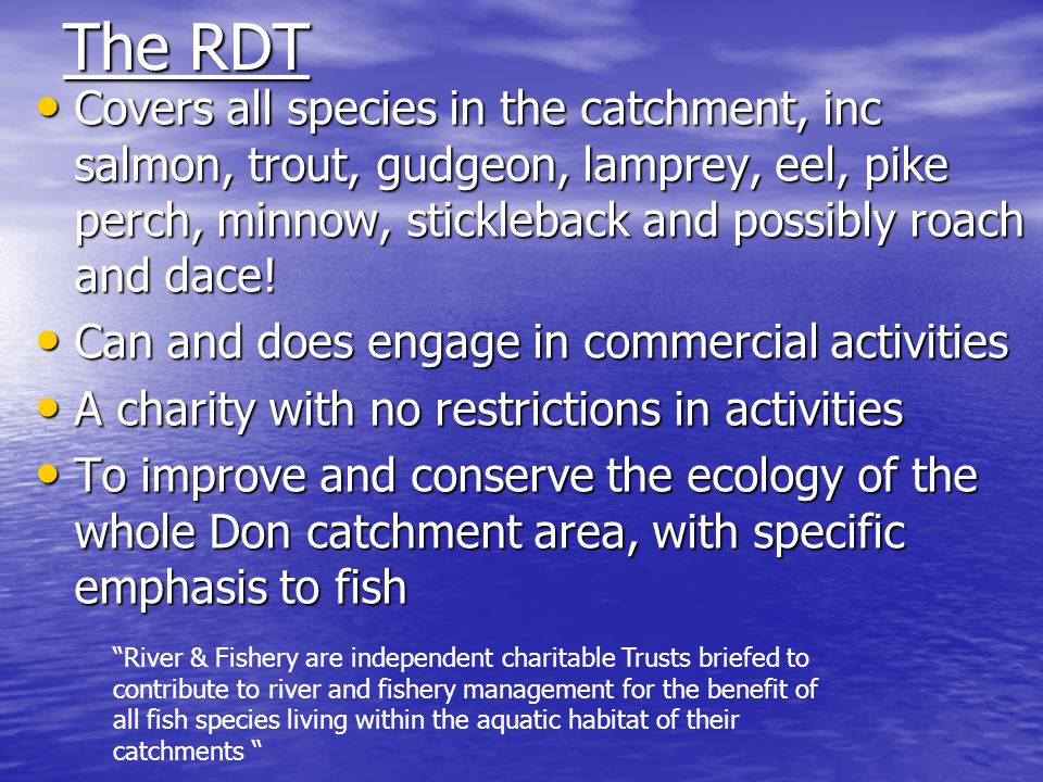 The RDT Covers all species in the catchment, inc salmon, trout, gudgeon, lamprey, eel, pike perch, minnow, stickleback and possibly roach and dace.