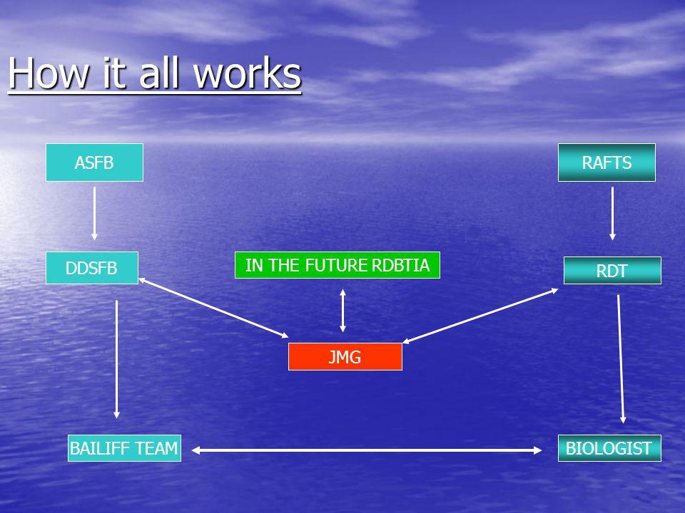 ASFB RAFTS DDSFB RDT JMG BAILIFF TEAMBIOLOGIST How it all works IN THE FUTURE RDBTIA