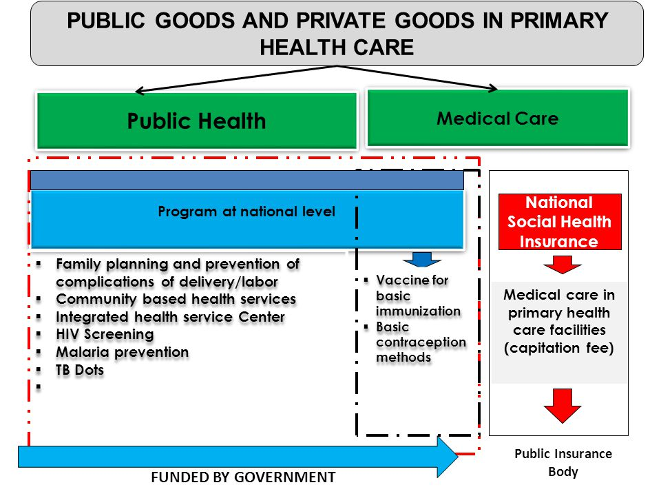 PUBLIC GOODS AND PRIVATE GOODS IN PRIMARY HEALTH CARE Public Health Medical Care Public Insurance Body Program at national level  Family planning and