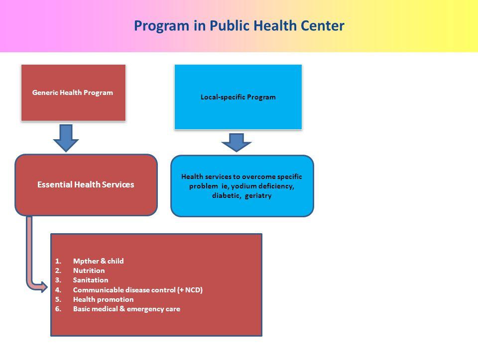 Program in Public Health Center Generic Health Program Local-specific Program Essential Health Services Health services to overcome specific problem i