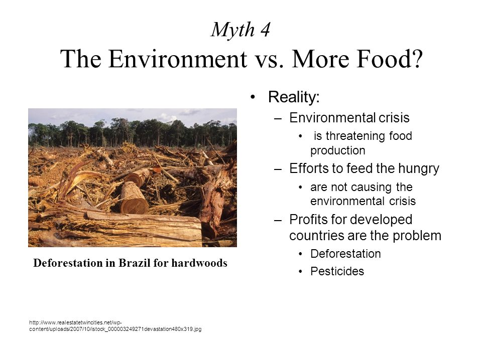 Myth 4 The Environment vs. More Food? Reality: –Environmental crisis is threatening food production –Efforts to feed the hungry are not causing the en